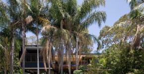 Современный дом в Сиднее: красота, приютившаяся в кронах деревьев фото
