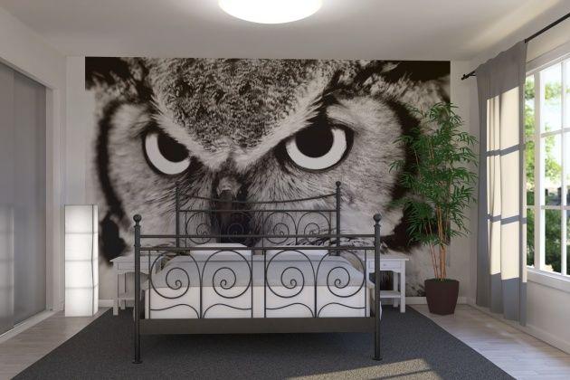 Черно-белые стены - это строгая классика для спальни. На фото - сюжет с совой