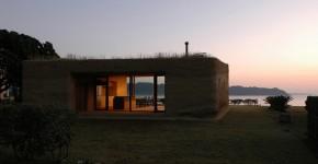 House C: дом с цветущей крышей фото