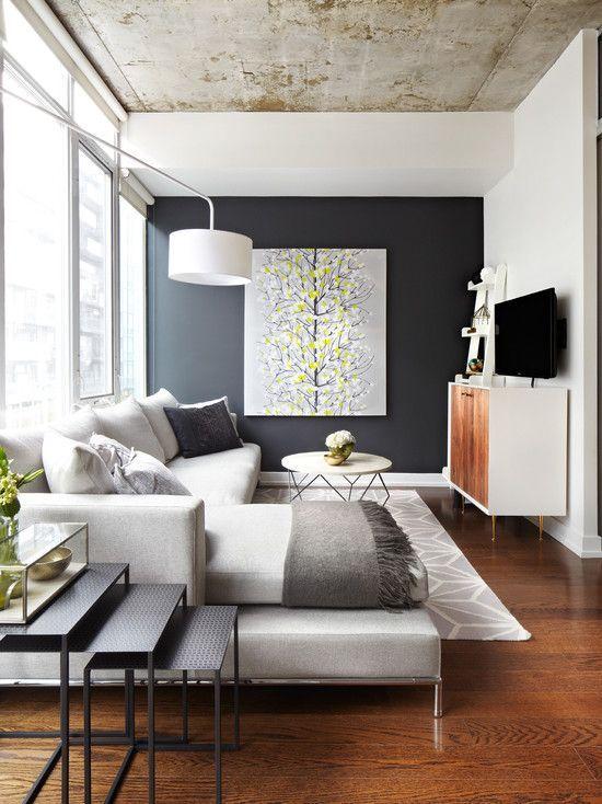 Небольшая гостиная с очень практичной мебелью и минимумом декора