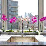 Как ухаживать за орхидеей в домашних условиях: поселите в доме сказку фото