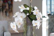 Фото 2 Как ухаживать за орхидеей в домашних условиях: хитрости для регулярного цветения и советы по уходу сразу после покупки
