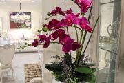 Фото 4 Как ухаживать за орхидеей в домашних условиях: хитрости для регулярного цветения и советы по уходу сразу после покупки