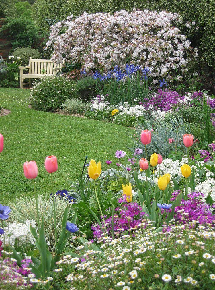 Заслуженной популярностью пользуются у садоводов милые весенние тюльпаны