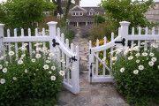 Фото 32 Цветы на даче (60 фото): создаем райский уголок