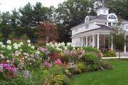 Фото 28 Цветы на даче (60 фото): создаем райский уголок