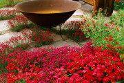 Фото 3 Цветы на даче (60 фото): создаем райский уголок