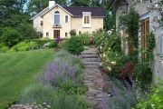 Фото 18 Цветы на даче (60 фото): создаем райский уголок