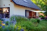 Фото 17 Цветы на даче (60 фото): создаем райский уголок