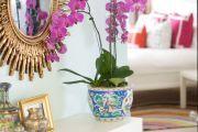 Фото 10 Как ухаживать за орхидеей в домашних условиях: хитрости для регулярного цветения и советы по уходу сразу после покупки