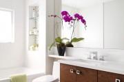 Фото 14 Как ухаживать за орхидеей в домашних условиях: хитрости для регулярного цветения и советы по уходу сразу после покупки