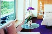Фото 7 Как ухаживать за орхидеей в домашних условиях: хитрости для регулярного цветения и советы по уходу сразу после покупки