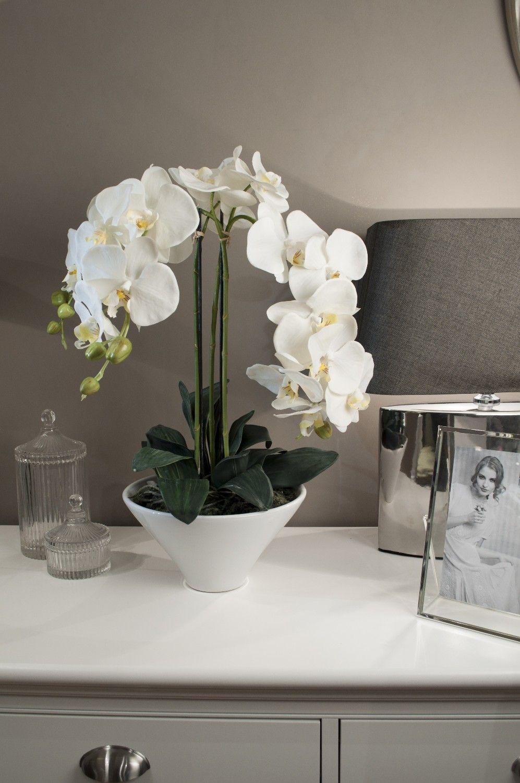 Фото 1 - Изысканная белая орхидея