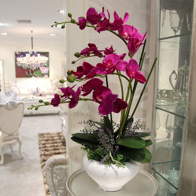 Фото 2 - Приобретать орхидеи лучше всего летом или весной
