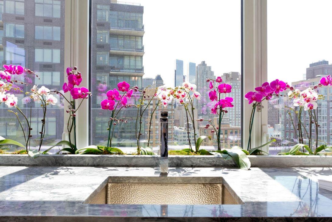 Фото 4 - Перед тем как начать уход за цветком, изучите рекомендации для конкретного вида орхидей