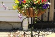 Фото 17 Кованые подставки для цветов (47 фото): достойная опора прекрасному
