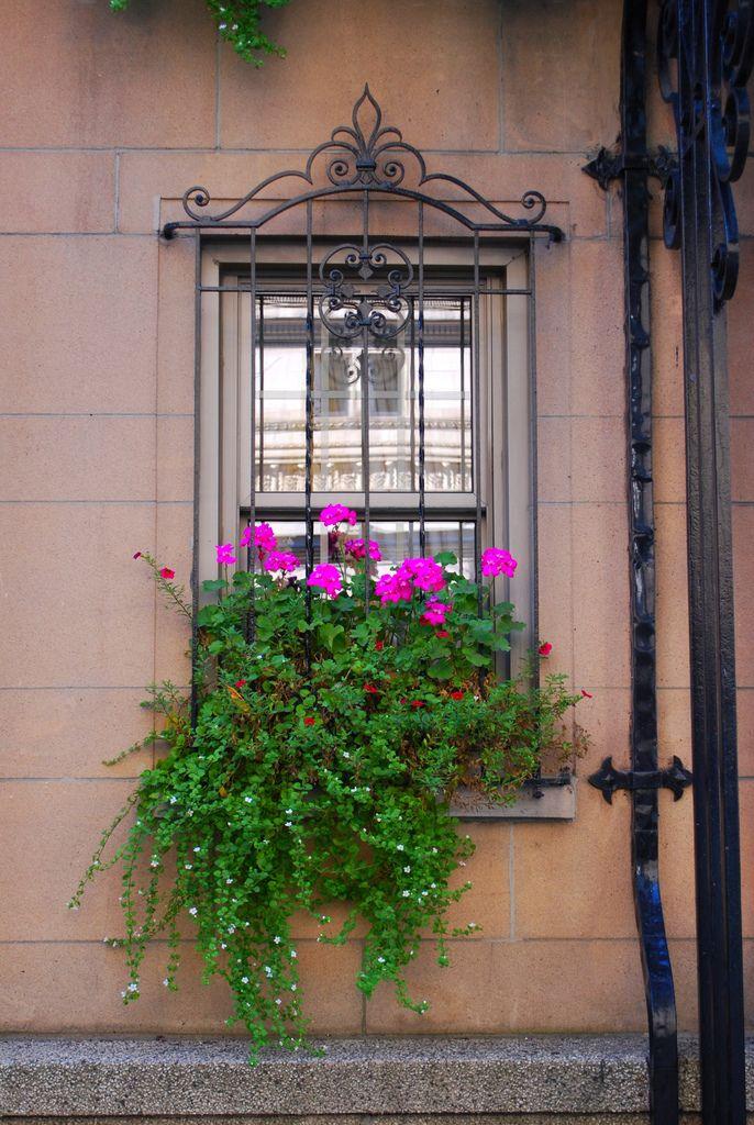 Окно с решеткой можно дополнительно украсить цветами в горшочке