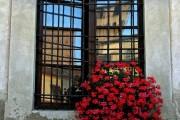Фото 16 Кованые решетки на окна (65 фото): безопасность и декор в едином решении