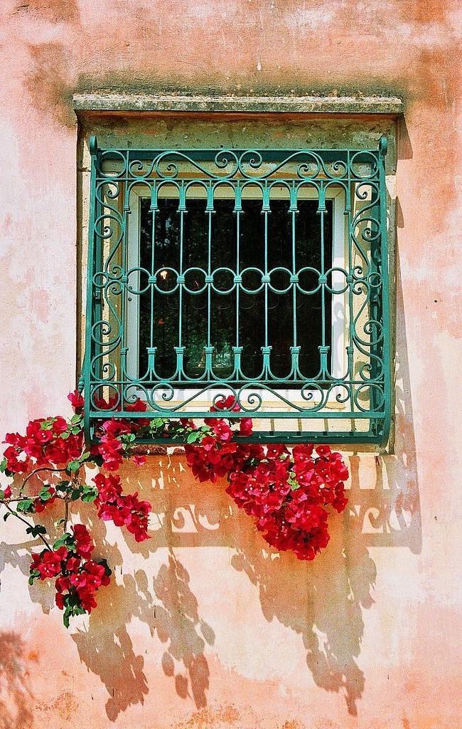 Решетка приглушенного зеленого цвета очень гармонично выглядит на фоне розового фасада здания и алых цветов