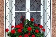 Фото 18 Кованые решетки на окна (65 фото): безопасность и декор в едином решении