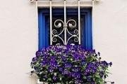 Фото 4 Кованые решетки на окна (65 фото): безопасность и декор в едином решении