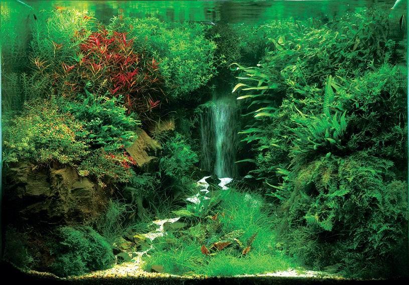 Немаловажную роль в создании иллюзии водопада играет и вся композиция