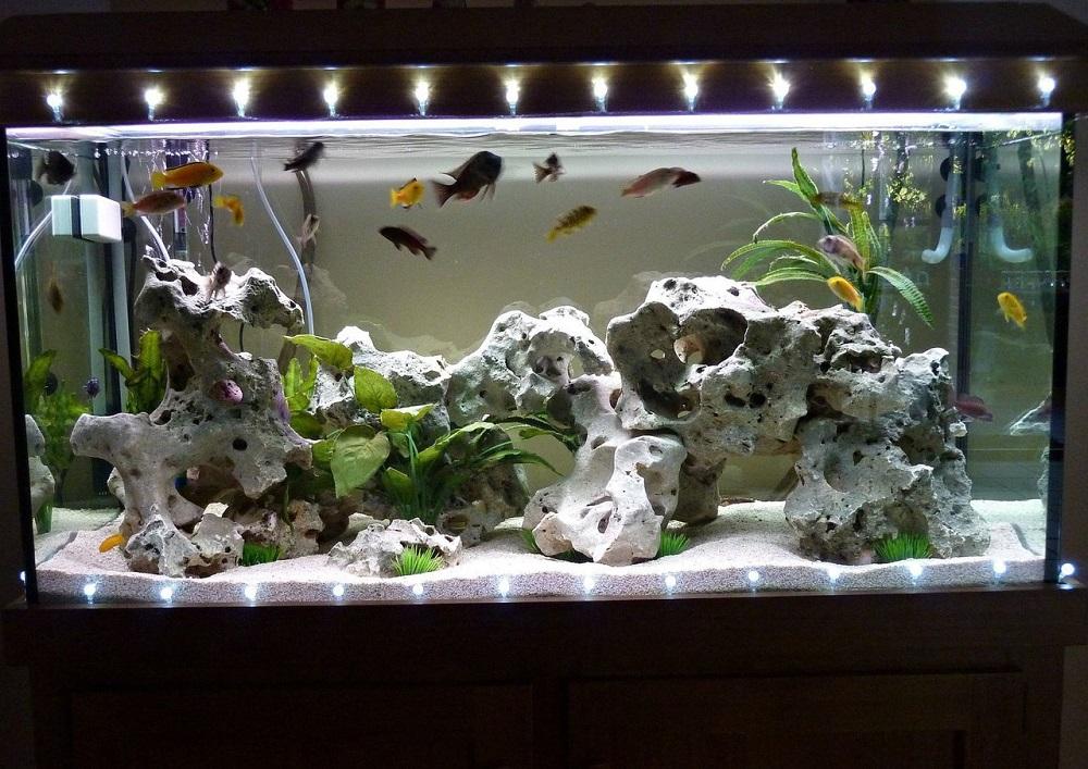 Как сделать украшения для аквариуму 975