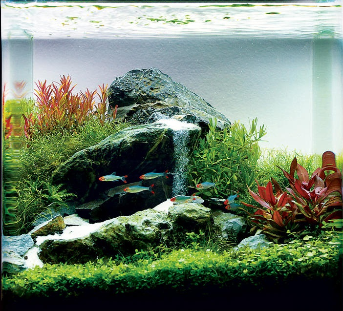 Водопад для аквариума своими руками фото