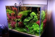 Фото 19 Оформление аквариума своими руками (53 фото): создаем подводное чудо