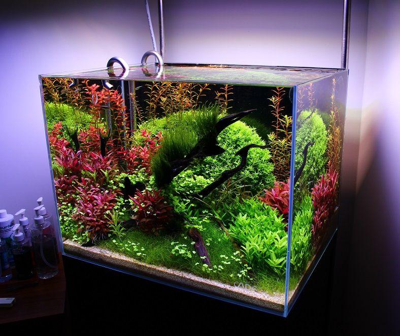 Интерьер для аквариума своими руками фото
