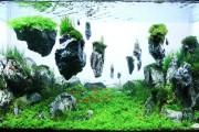 Фото 6 Оформление аквариума своими руками (53 фото): создаем подводное чудо