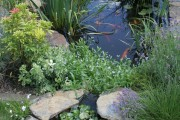 Фото 7 Декоративный пруд (55 фото): красота и комфорт своими руками