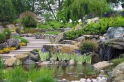 Фото 11 Декоративный пруд (55 фото): красота и комфорт своими руками