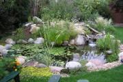 Фото 14 Декоративный пруд (55 фото): красота и комфорт своими руками