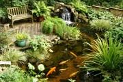 Фото 4 Декоративный пруд (55 фото): красота и комфорт своими руками