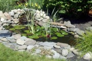 Фото 20 Декоративный пруд (55 фото): красота и комфорт своими руками