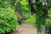 Фото 8 Клематисы в ландшафтном дизайне (45 фото): роскошное украшение двора