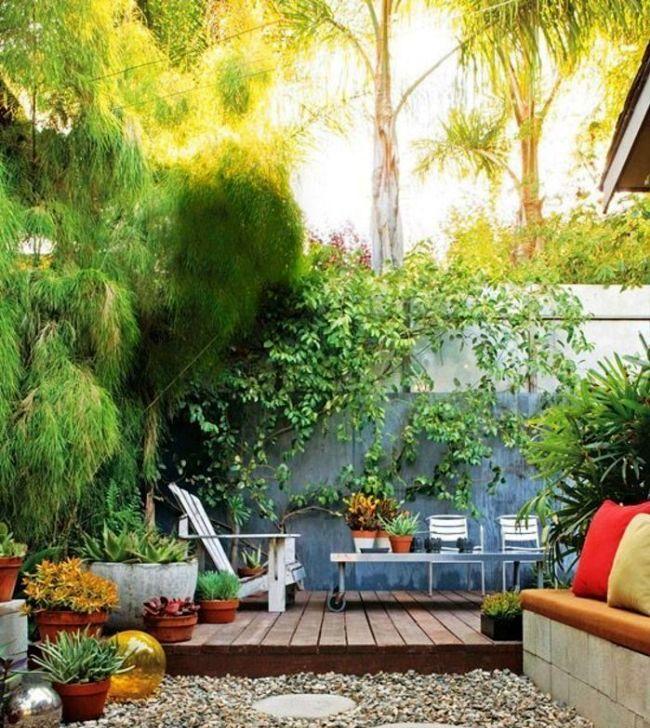 Дерево лиственницы украшает дачный дворик