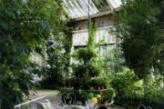 Фото 9 Проект дома с зимним садом (51 фото): когда уютно и людям, и растениям