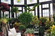 Фото 3 Проект дома с зимним садом (51 фото): когда уютно и людям, и растениям