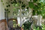 Фото 7 Проект дома с зимним садом (51 фото): когда уютно и людям, и растениям