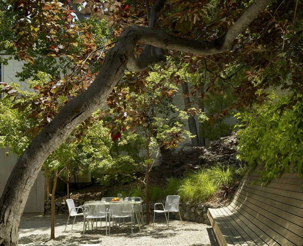 Длинная деревянная скамейка с высокой спинкой