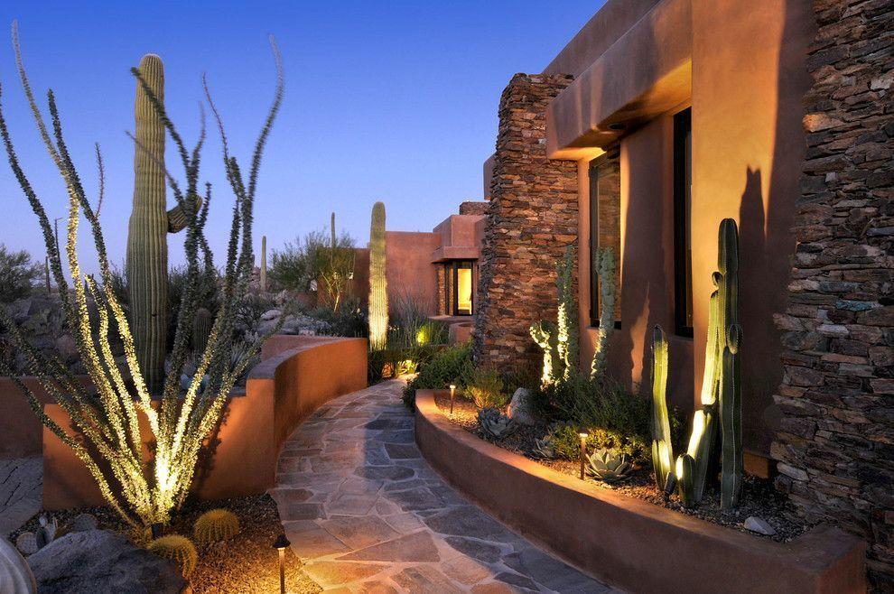 Совмещенное освещение - светильники столбики и, направленные на кактусы, акцентирующее светильники