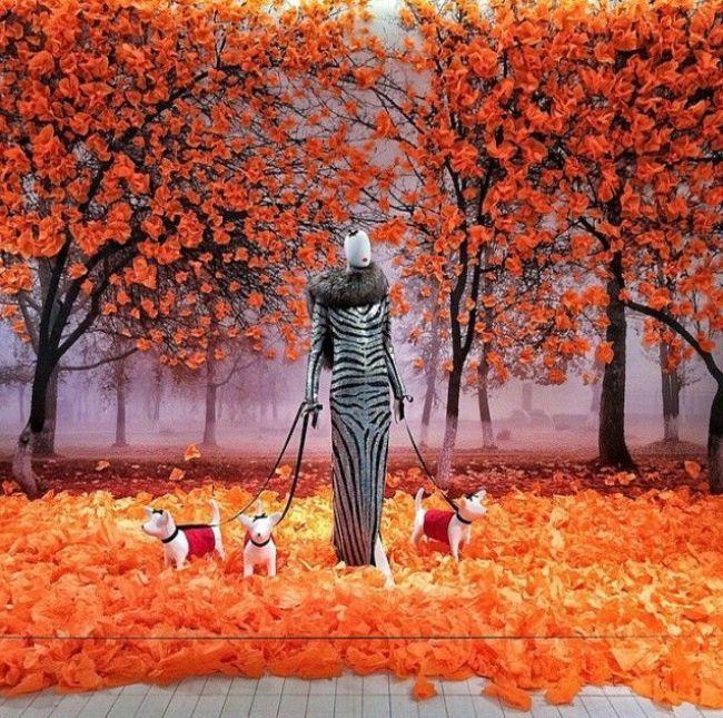 Дама с собачками - прогулка на витрине магазина одежды