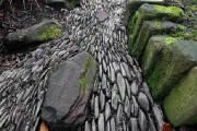 Фото 8 Сухой ручей (46 фото): когда поток камней оживает