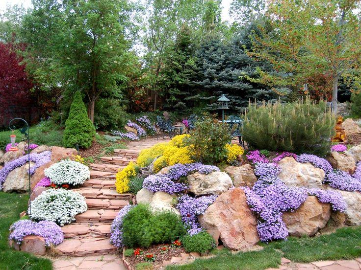 Альпинарий служит ярким украшение сада, выделяясь на фоне зеленого газона