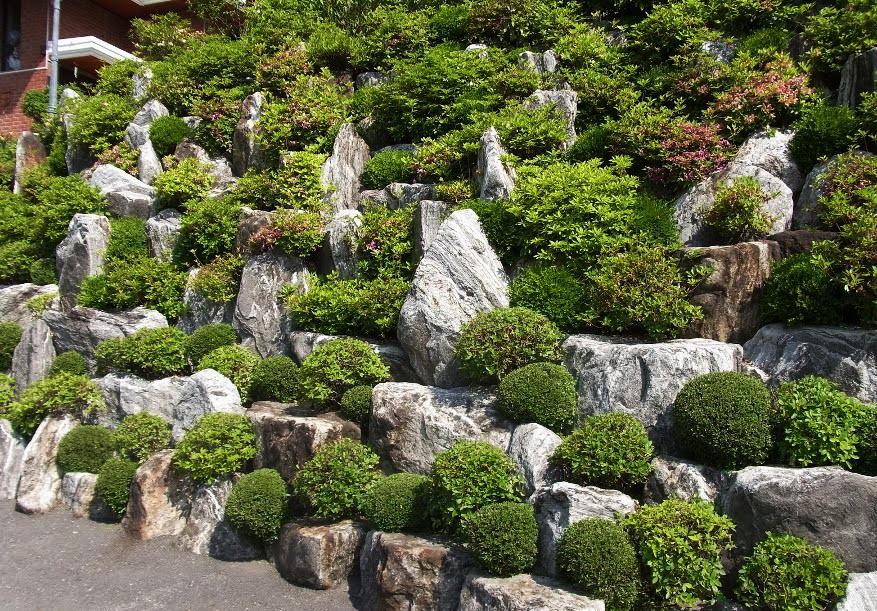 Высокая горка, сложена с камней и зеленых насаждений, может служить ограждением участка