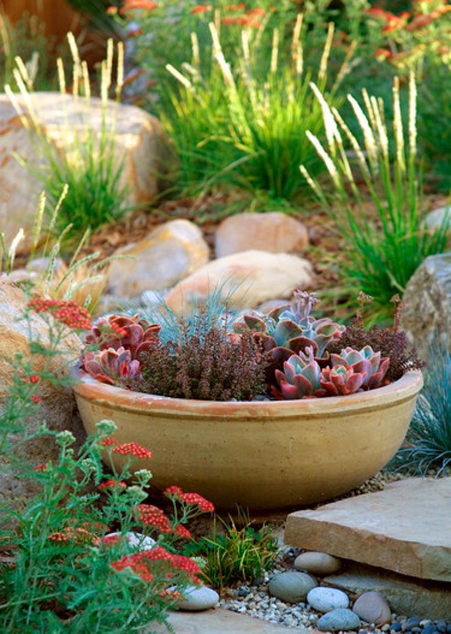 Креативное украшение альпинариев - глиняная чаша с растениями