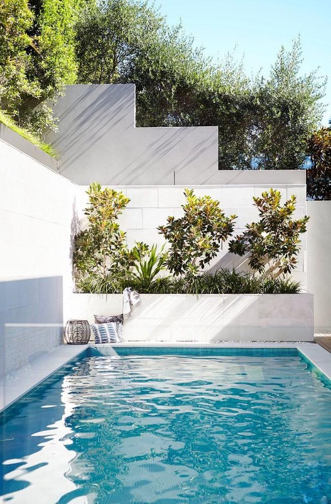 Грамотное озеленение позволит выгодно преобразовать пространство вокруг бассейна
