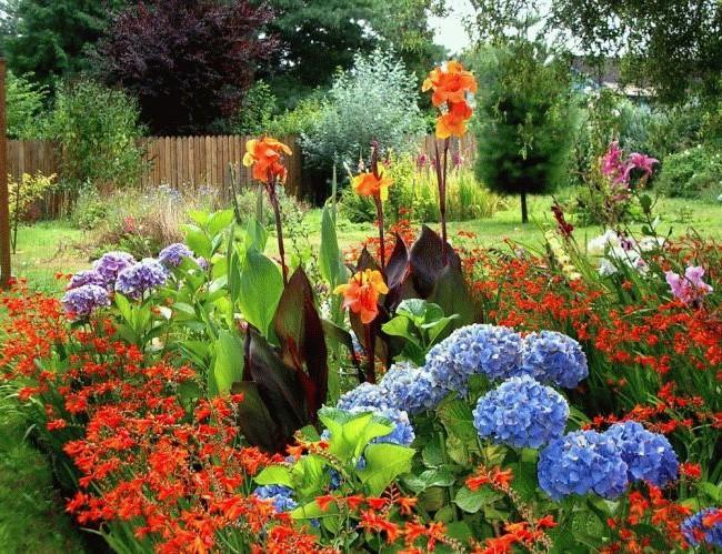 Соблюдайте все правила высадки этих растений и результат вас обязательно восхитит